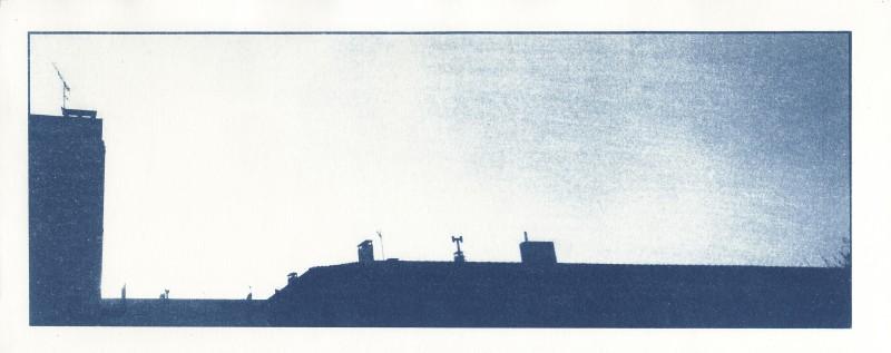 09 vol d'oiseau 3 - arles - cyanotype