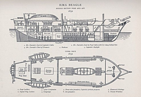 1832 hms beagle wikimedia commons